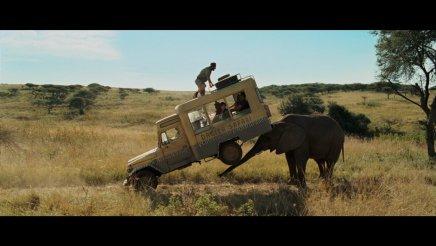 Safari – Blu-Ray