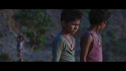 Slumdog Millionaire - Edition Collector 2DVD